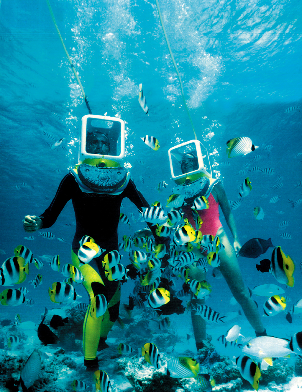 Popular Outdoor Activities To Do in Andaman And Nicobar Islands-Deep-Sea Diving