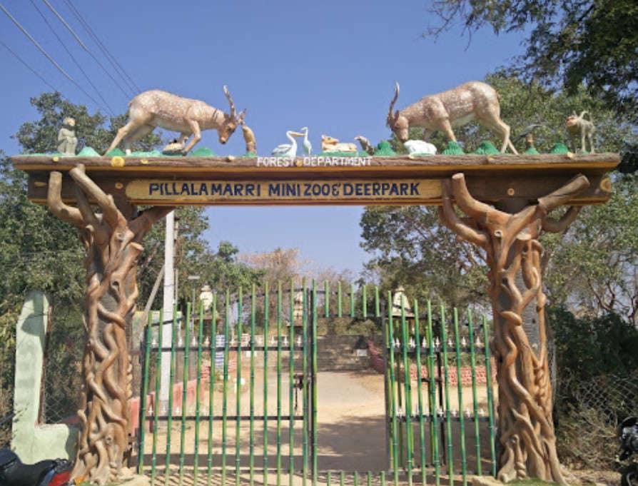 Top Place To Visit Near The Jurala Dam - Deer Park