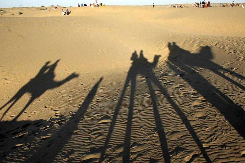 Best National Park In Rajasthan-Desert National Park