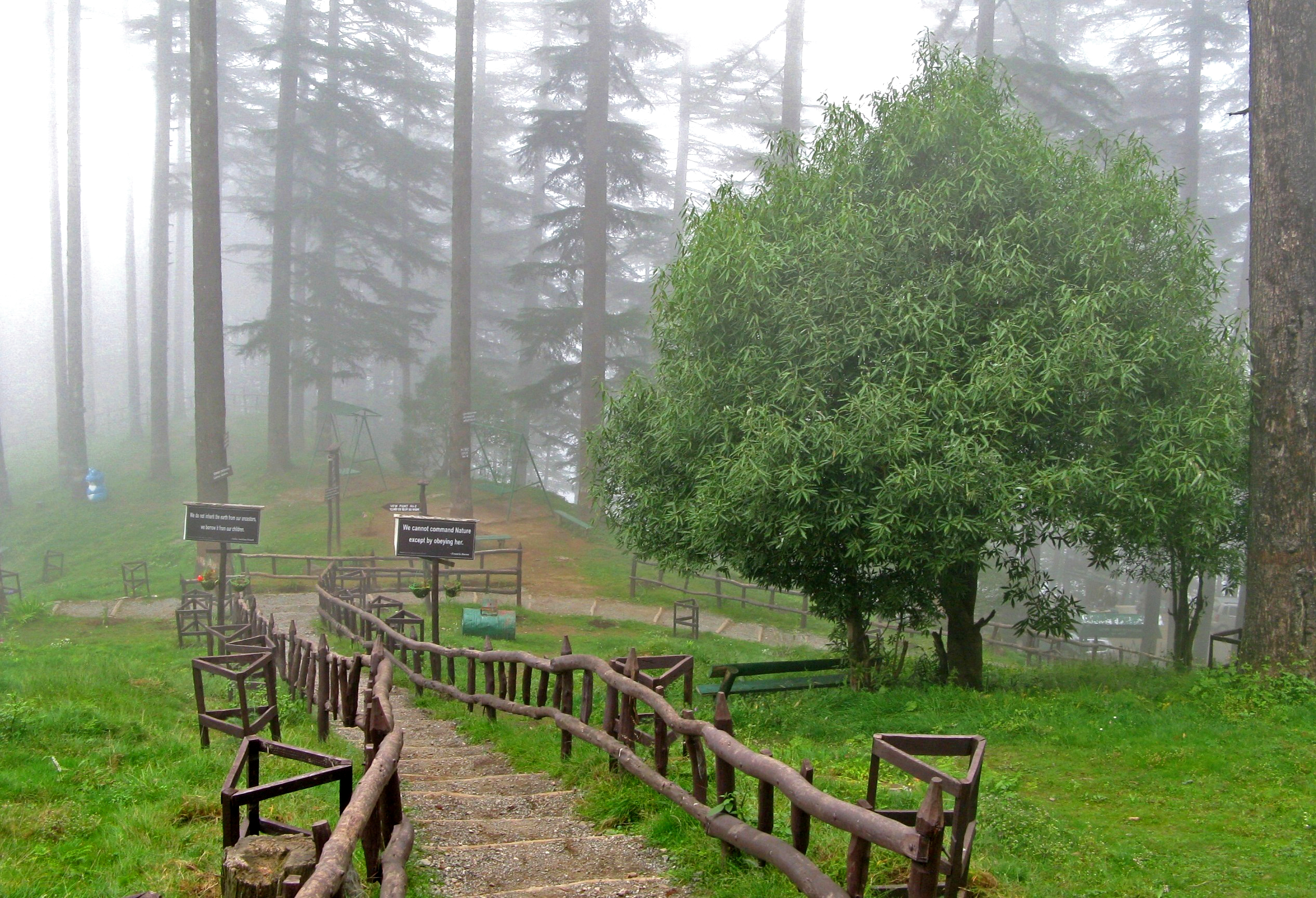 Dhanaulti Tourist Places To Visit In Uttarakhand
