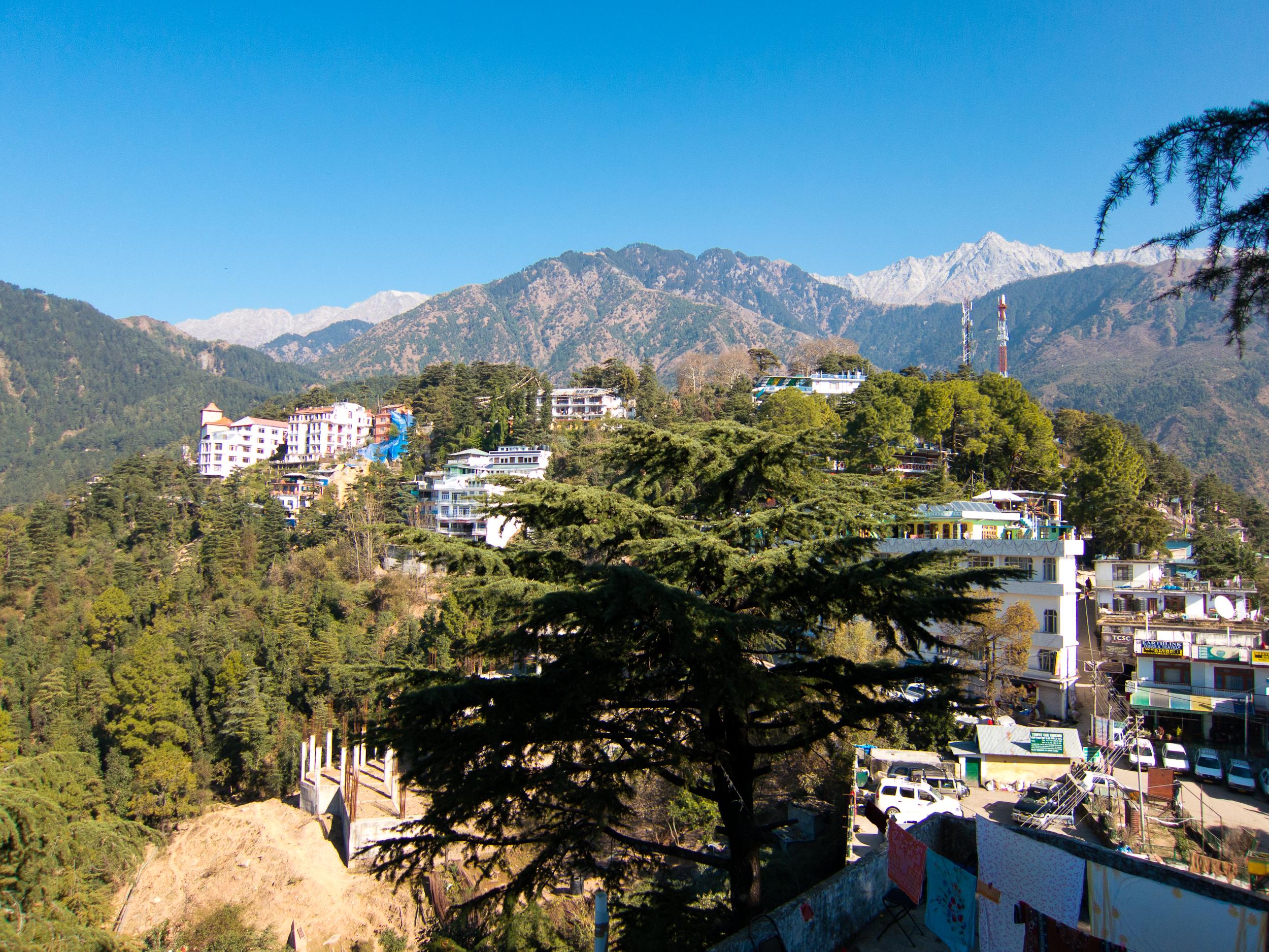 12 Best Hills Stations to Visit Around Delhi (2020)-Dharamshala
