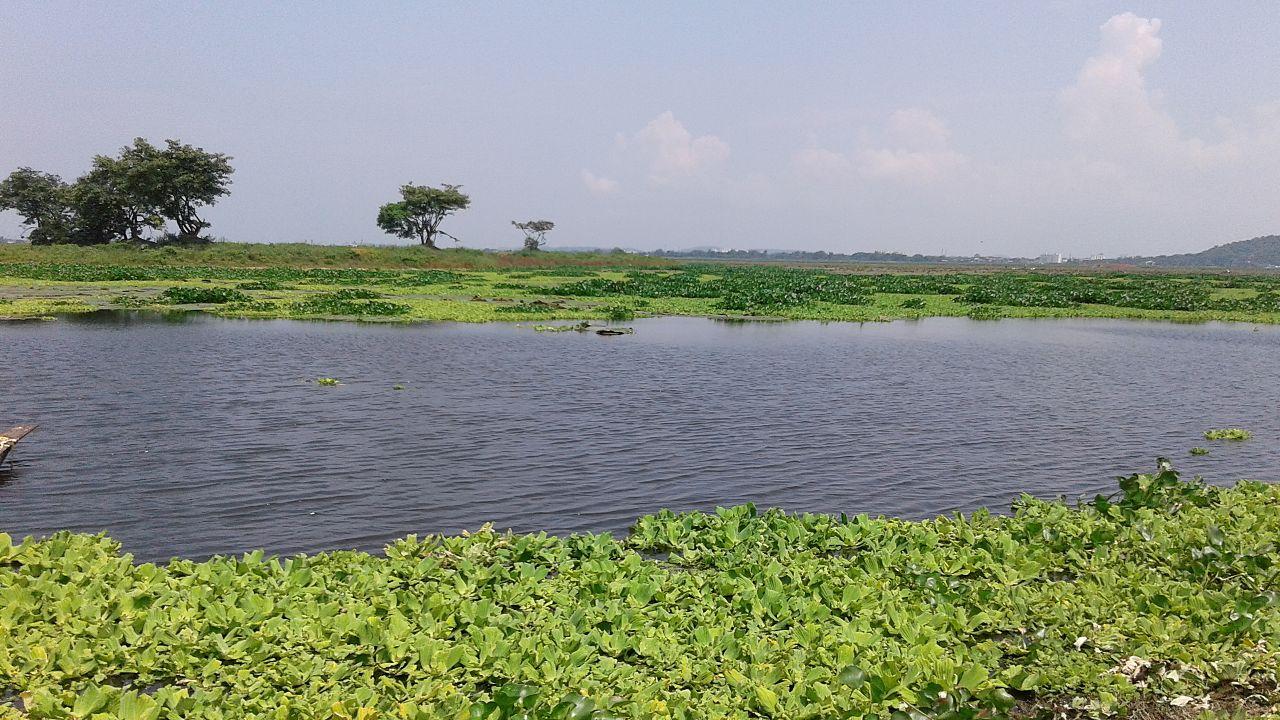 Dipor Bil - Amazing Picnic Spot in Assam