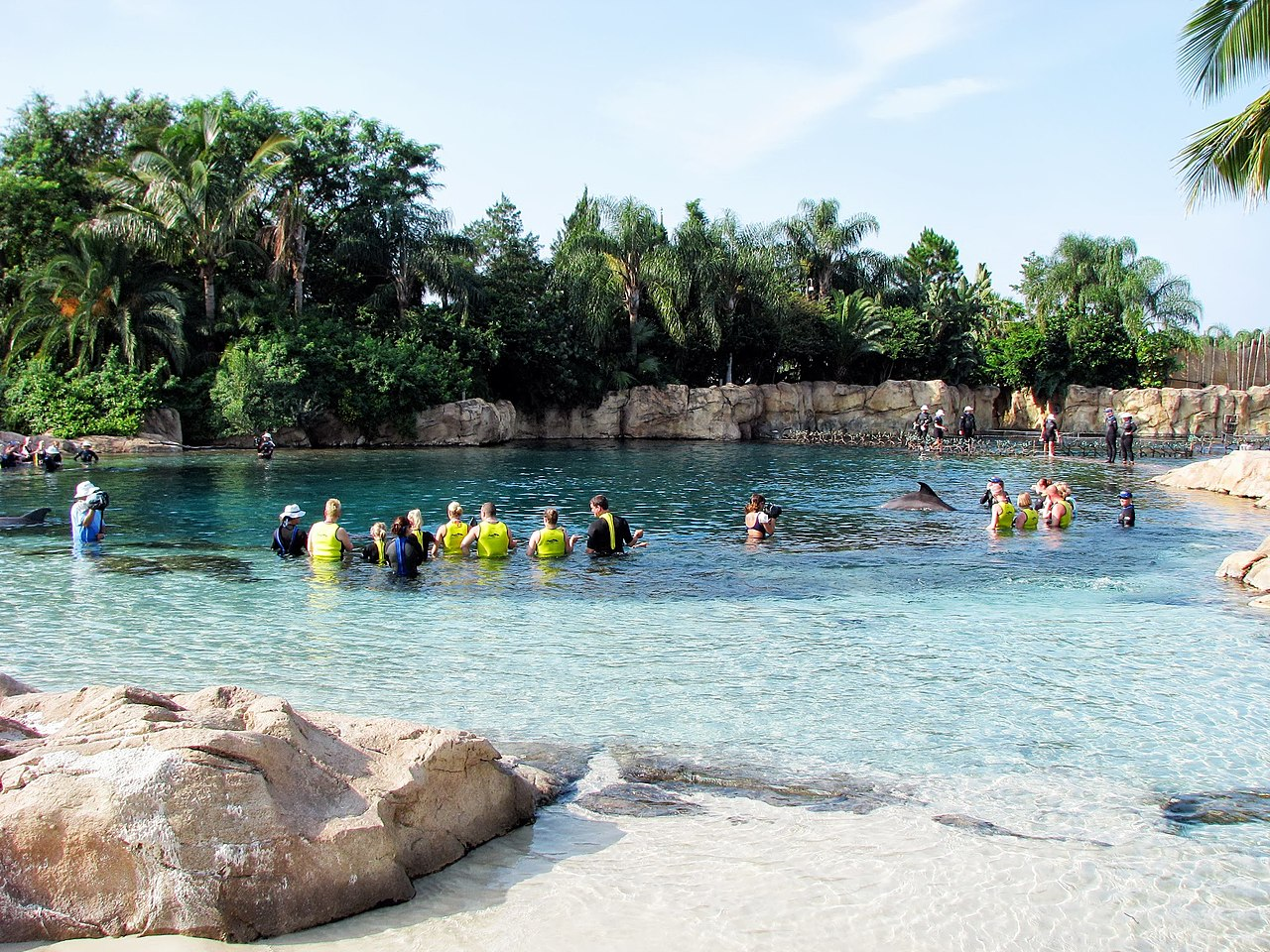 Top Fun Place For Kids Visit In The USA-Discovery Cove, Orlando