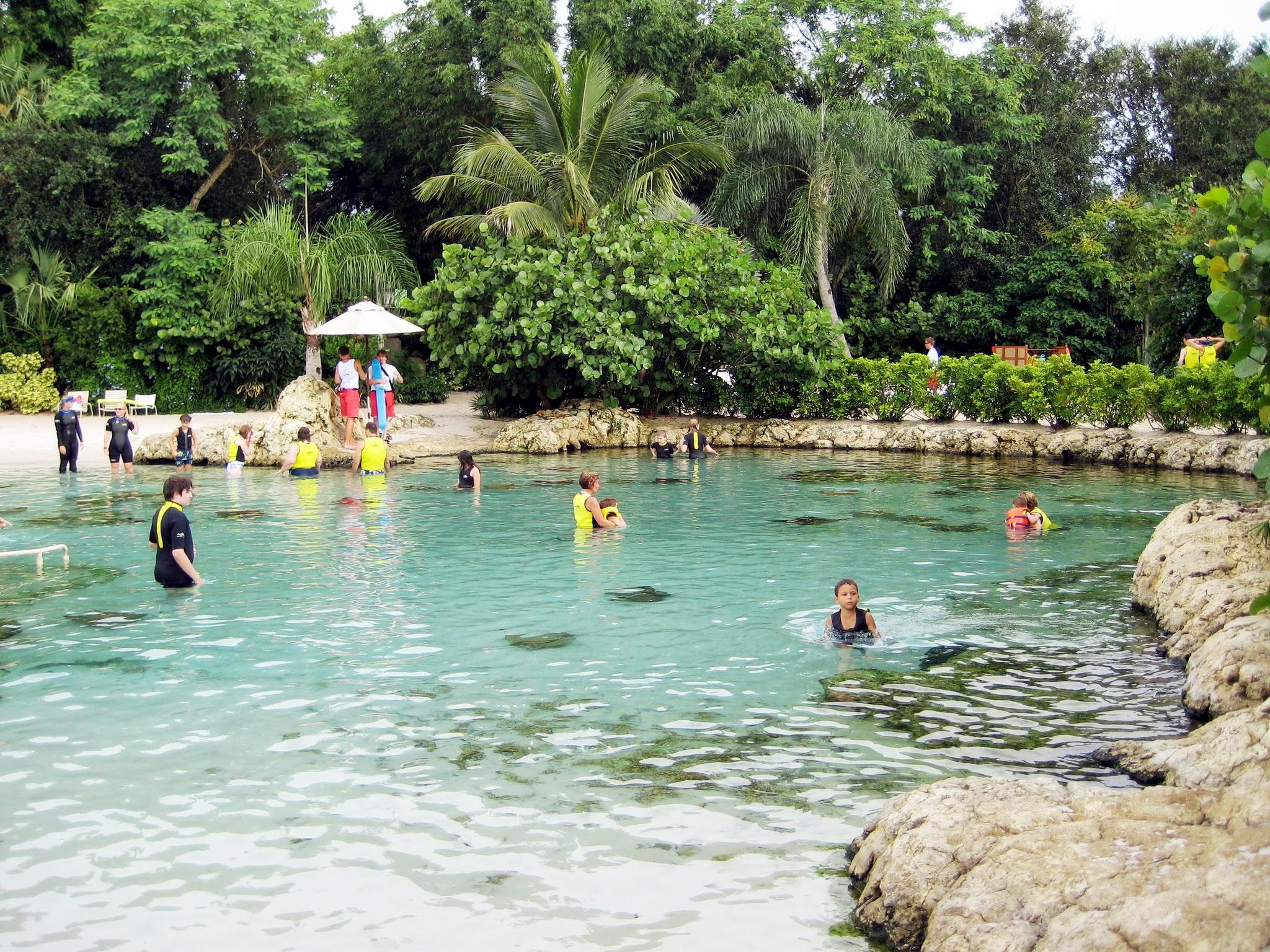 Orlando Theme Park-Discovery Cove