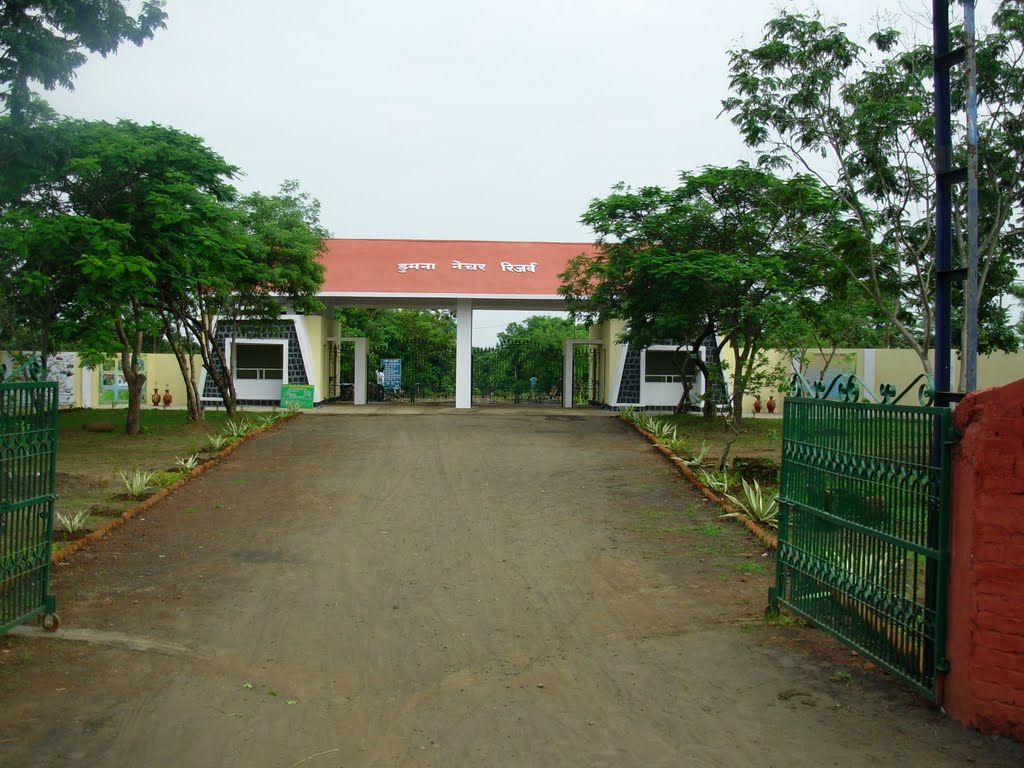 Dumna Nature Reserve Park-Top Place In Jabalpur For The Explorer In You