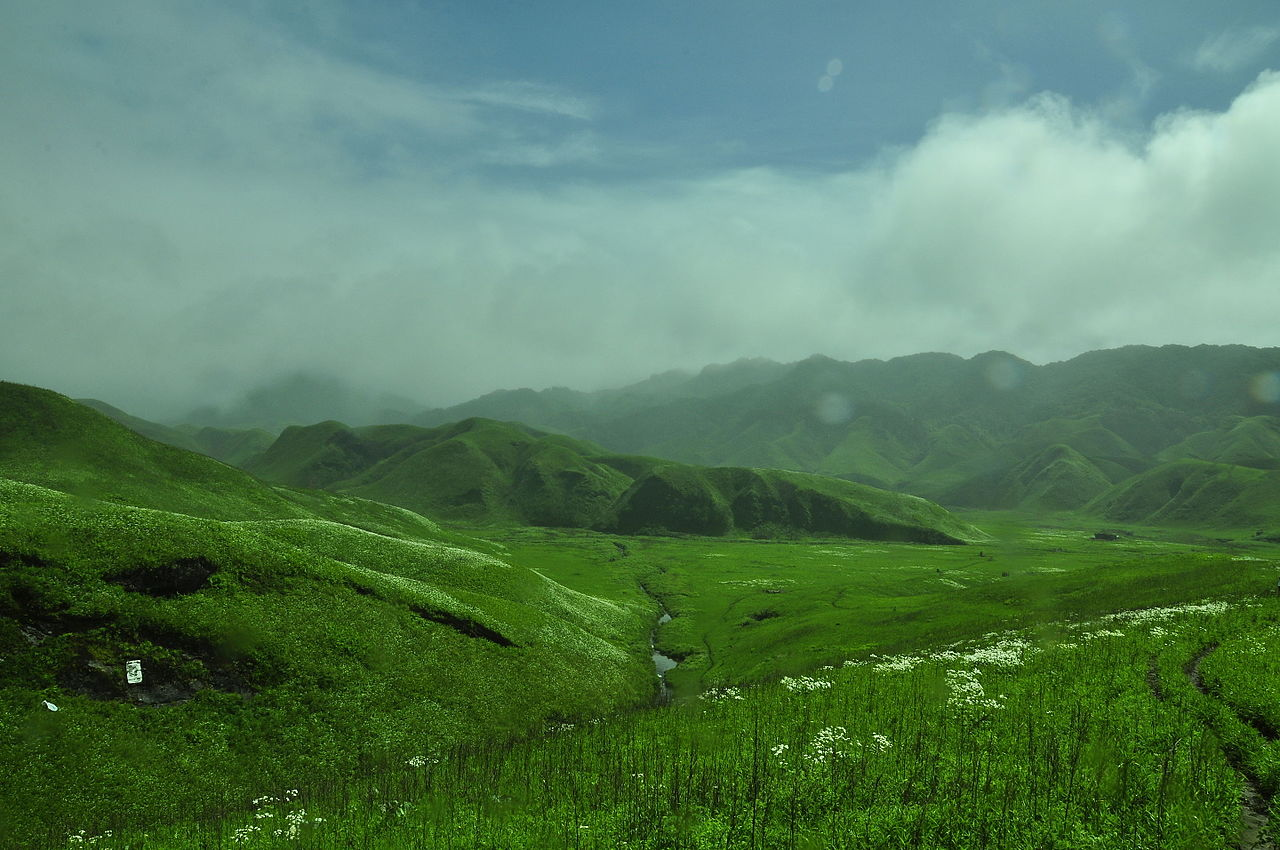 Amazing Place to Visit In Northeast State of Manipur-Dzukou Lilly, Dzukou Valley