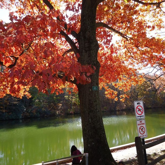 Echo Lake - Beautiful New Jersey Lake That One Must Not Miss