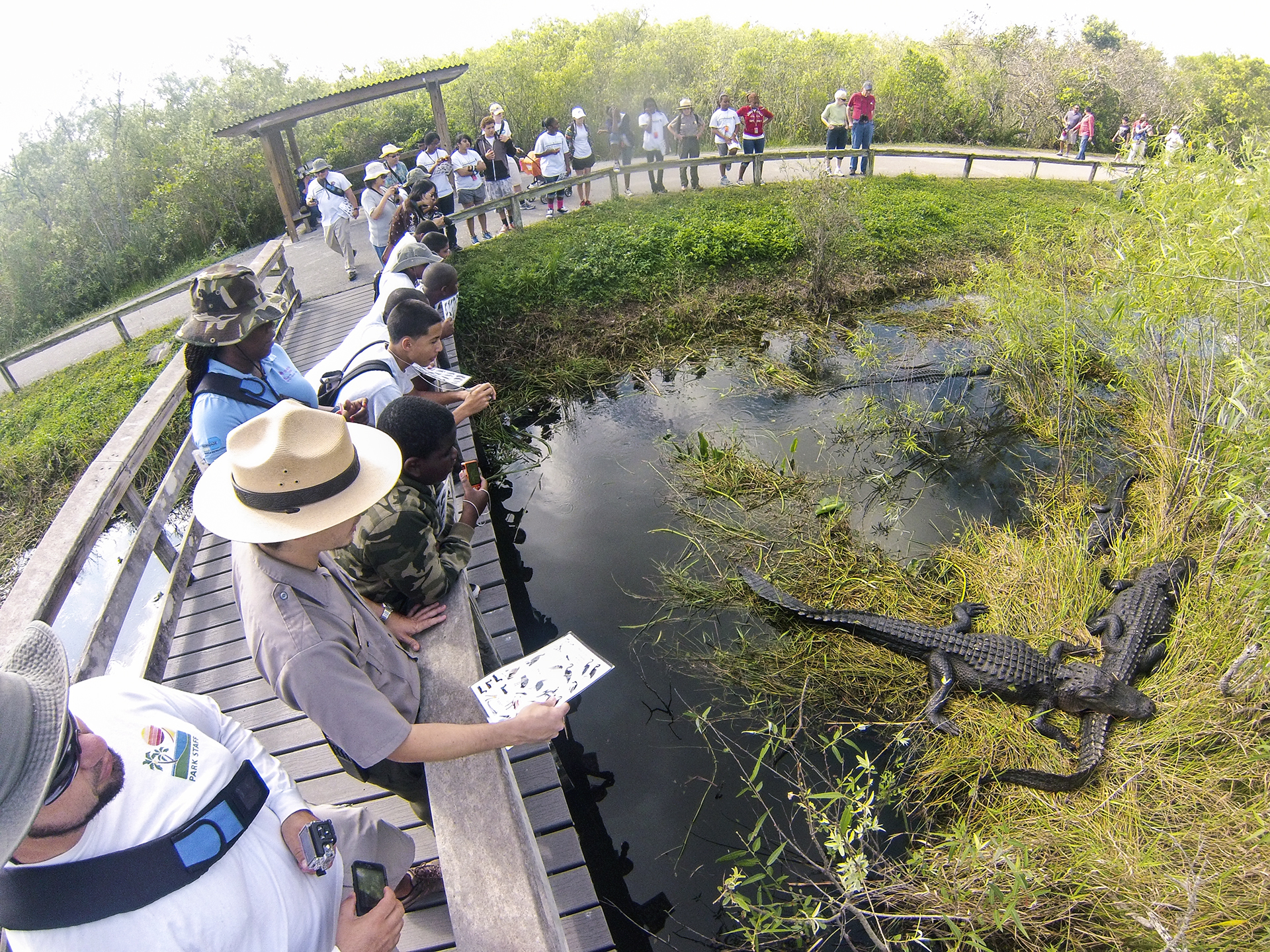 Everglades National Park - Top Tourist Locations To Visit In Miami