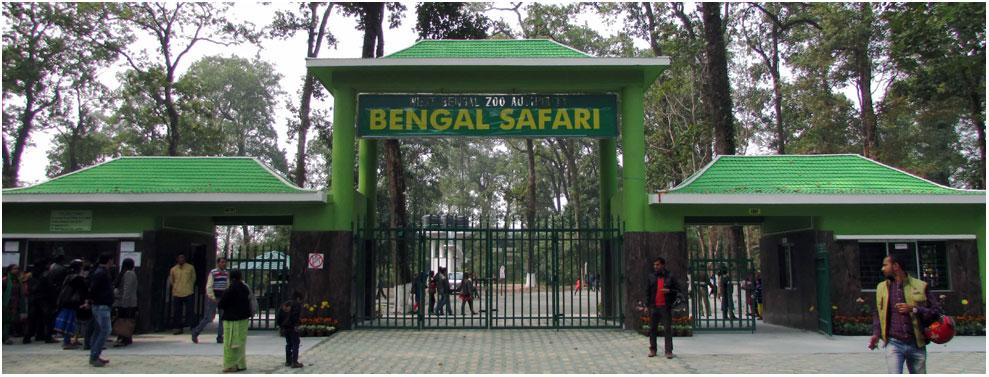 Top Things To Do in Siliguri - Experiencing Wildlife at Bengal Safari Park
