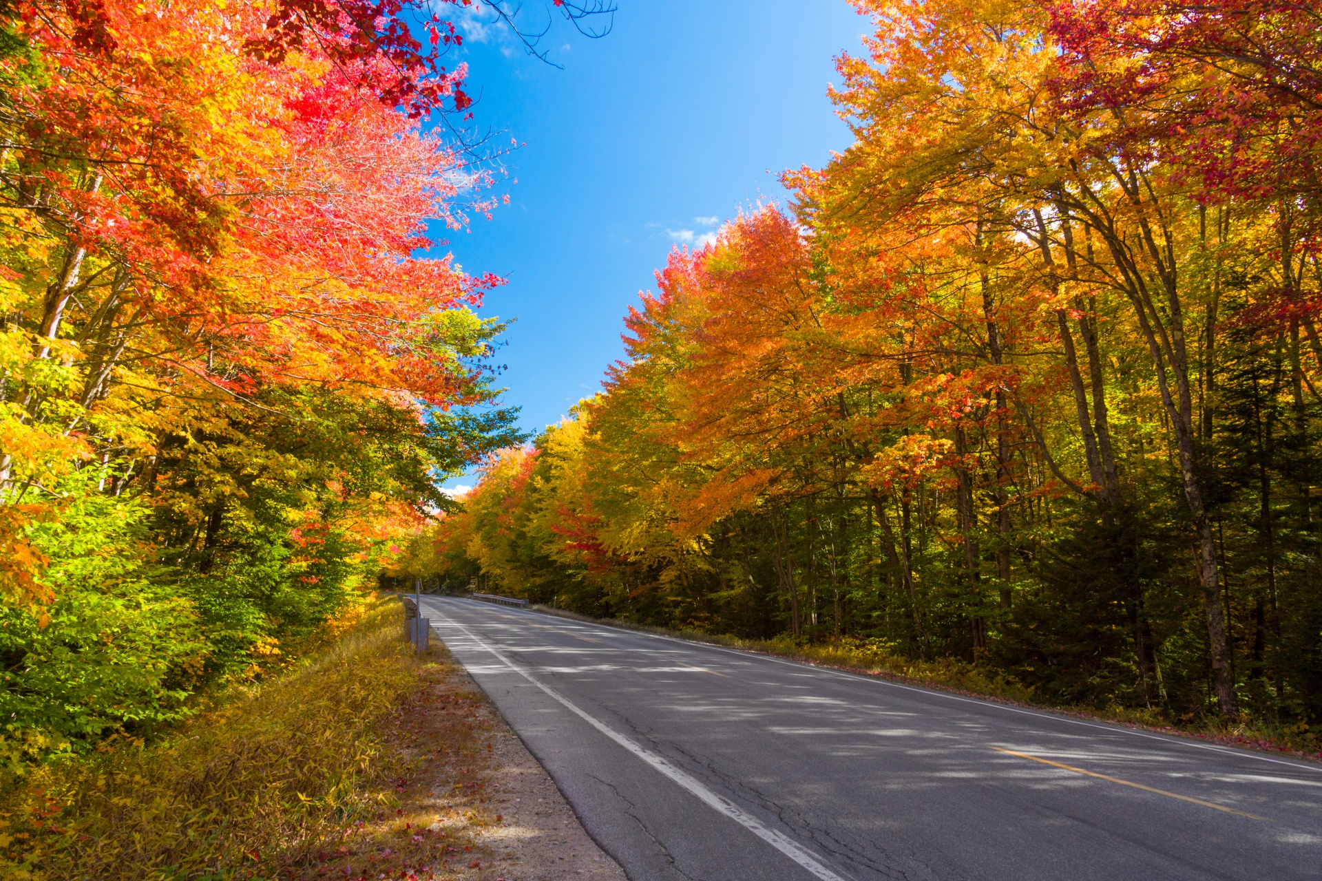 Best Visiting Place In New Hampshire-Fall Foliage Drive
