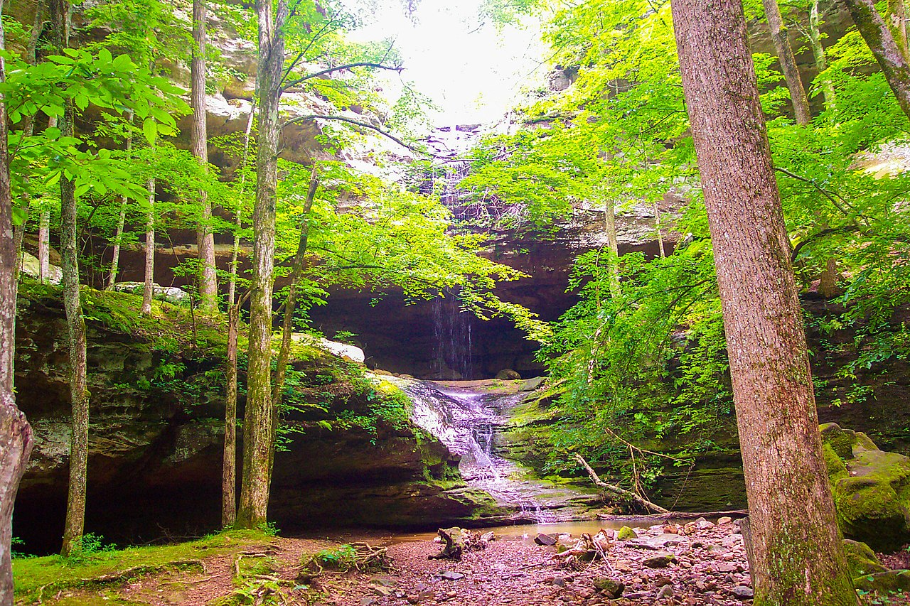 Outdoor Adventures In Illinois - Ferne Clyffe State Park