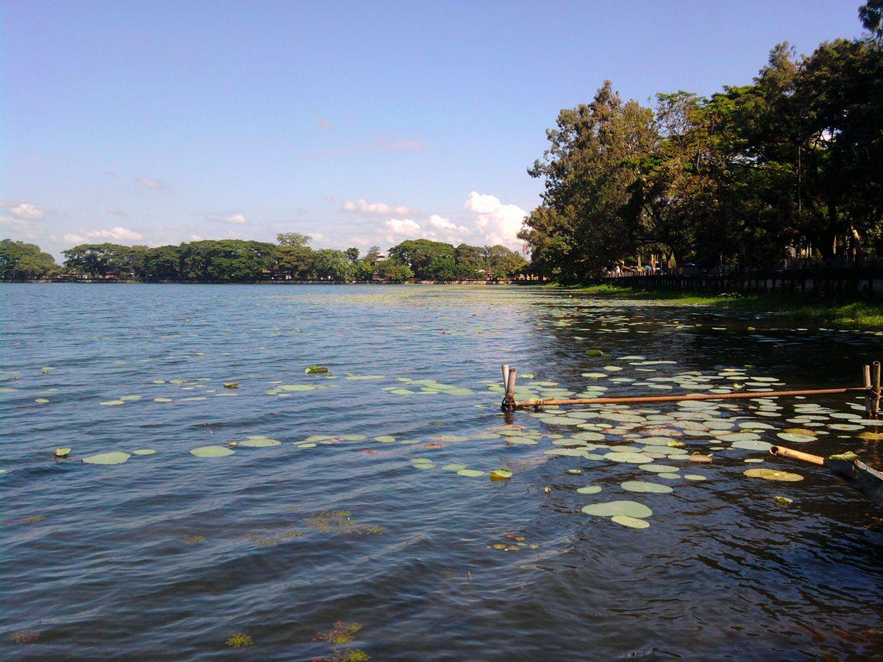 Fresh Water Pond at Sivasagar - Assam