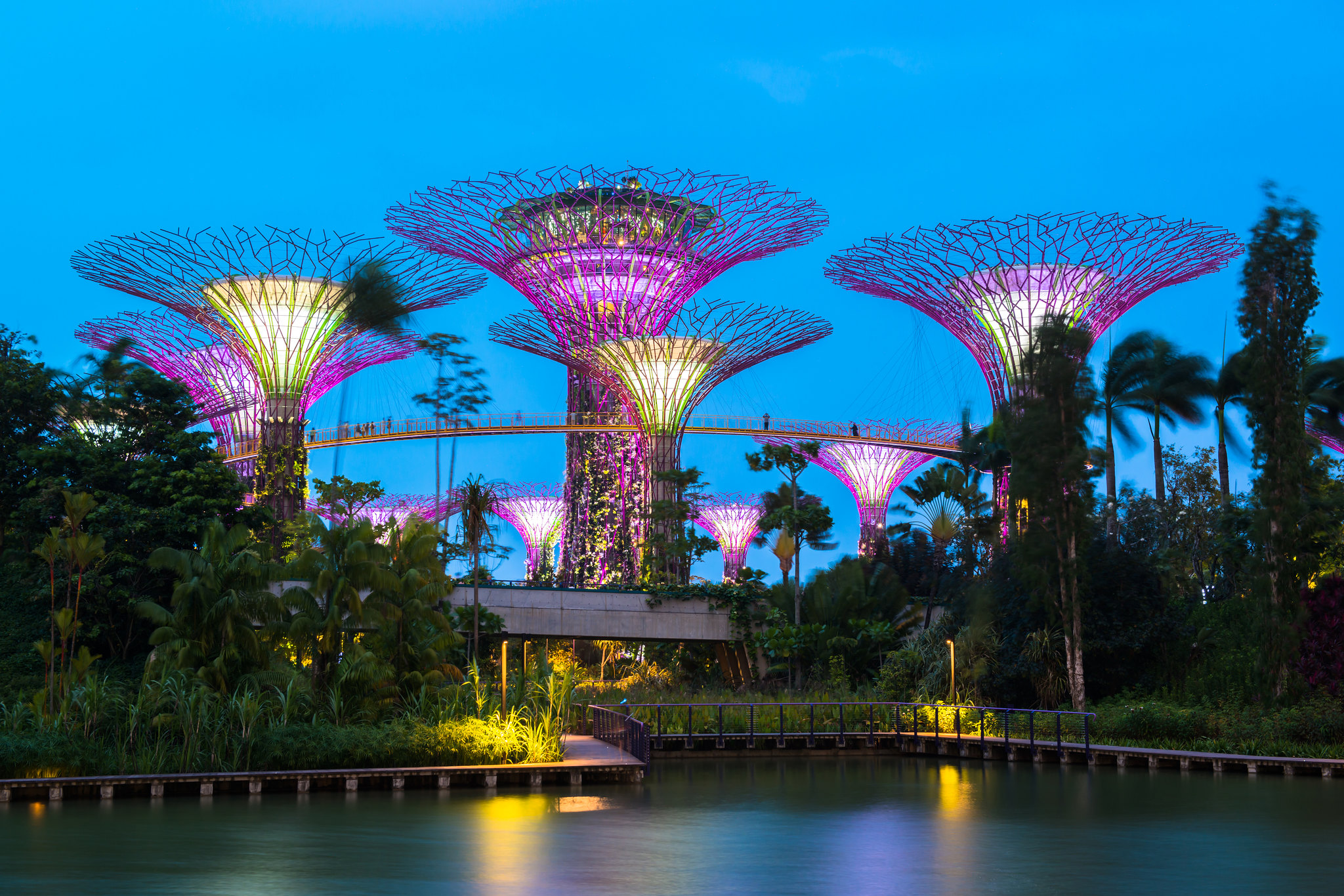 Gardens by the Bay-Spectacular Place to Check Off Your Singapore