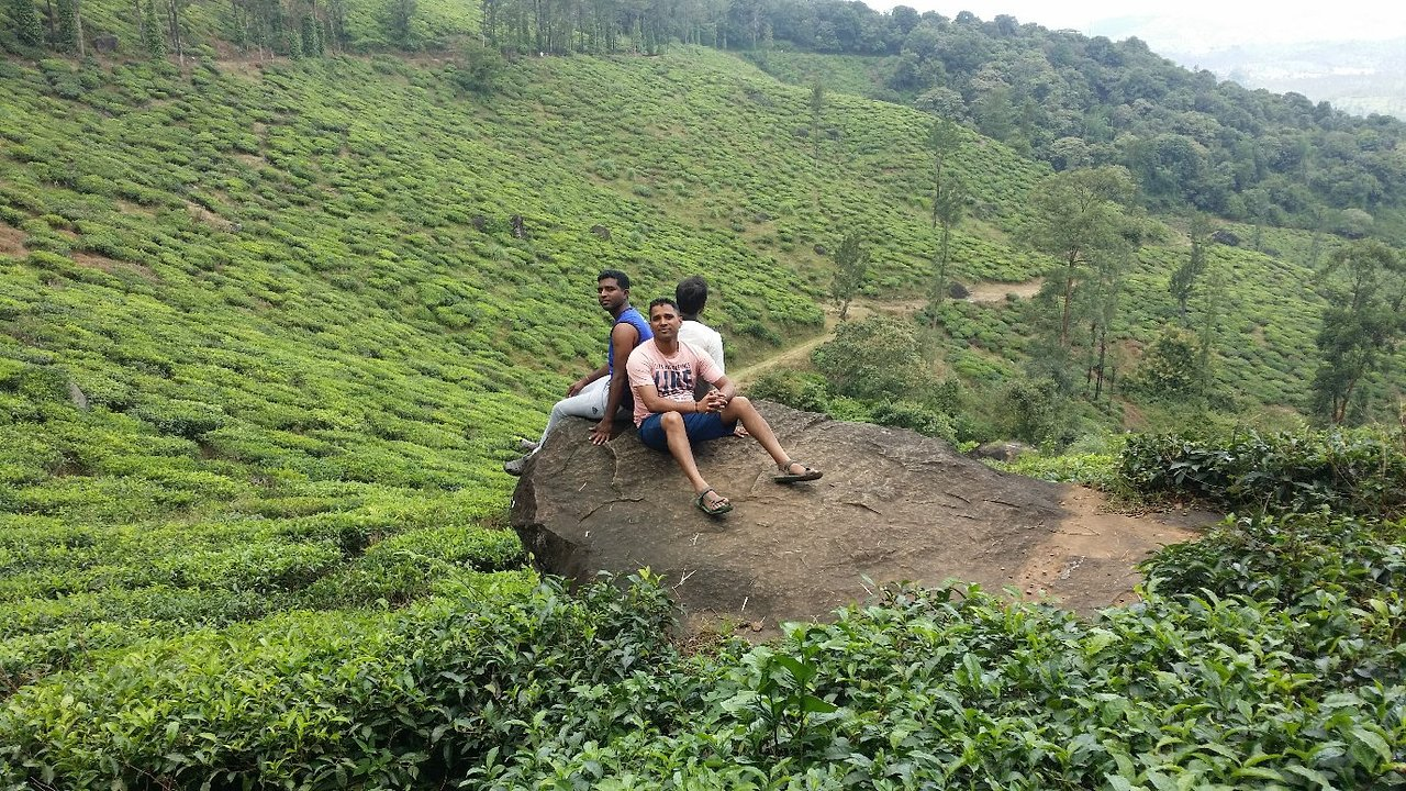 Go For A Trek at Chembra Peak - Things Which One Must Not Miss in Wayanad