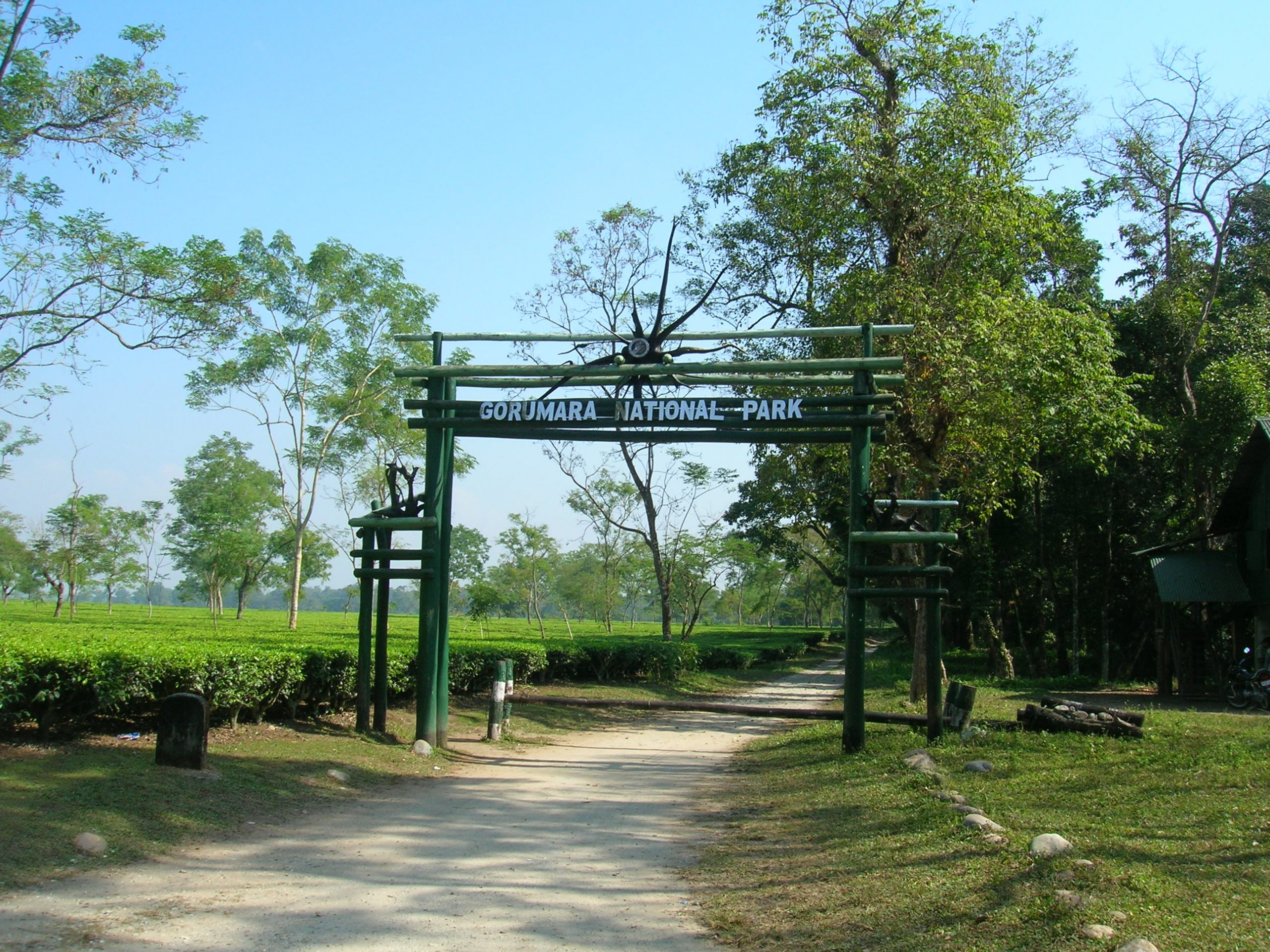Gorumara National Park - Worthy Places to Visit Every Tourist in West Bengal
