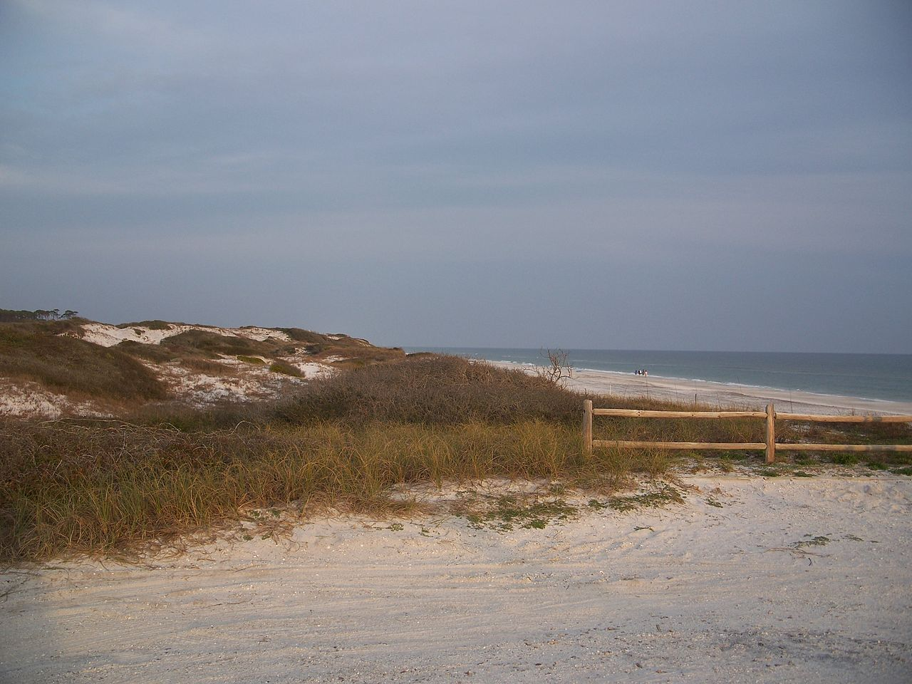 Amazing Place Of Emerald Coast That Draws The Tourist-Grayton Beach State Park