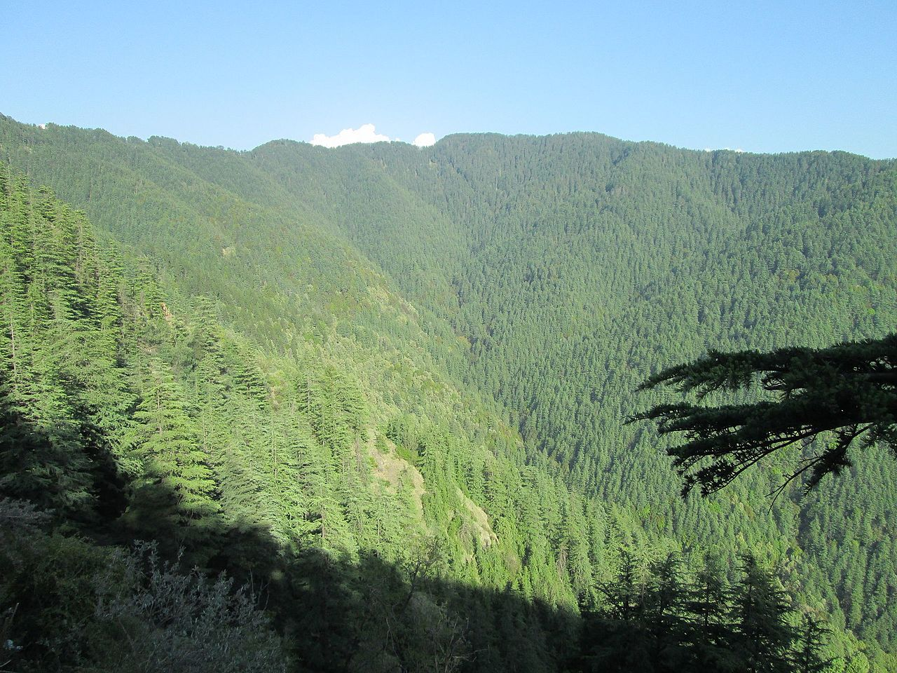 Green Valley- Best Place to Visit in Shimla and Kufri
