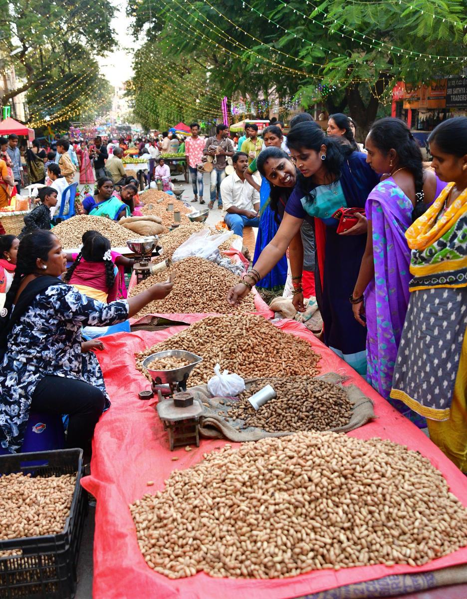 Sight-seeing Festival of Karnataka-Groundnut Festival