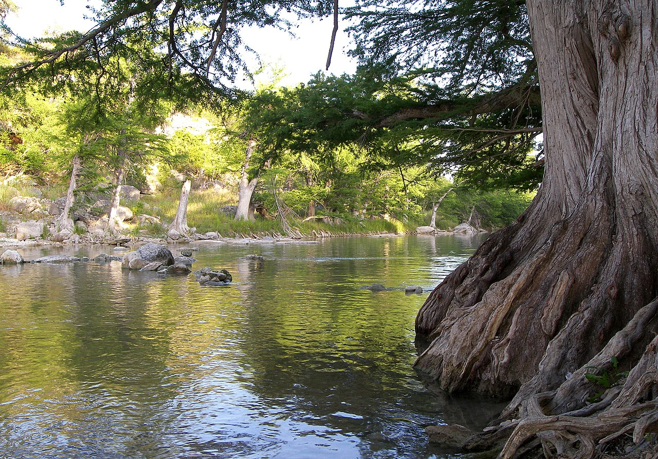 Top Camping Spot In Texas For Outdoor Fun-Guadalupe River State Park