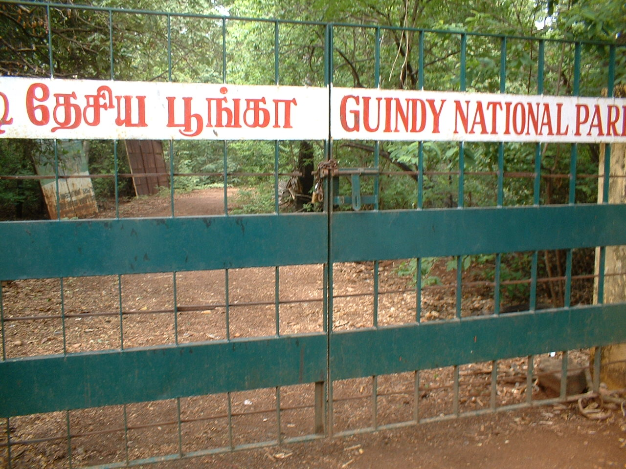 Beautiful Park That One Must Not Miss in Chennai-Guindy National Park