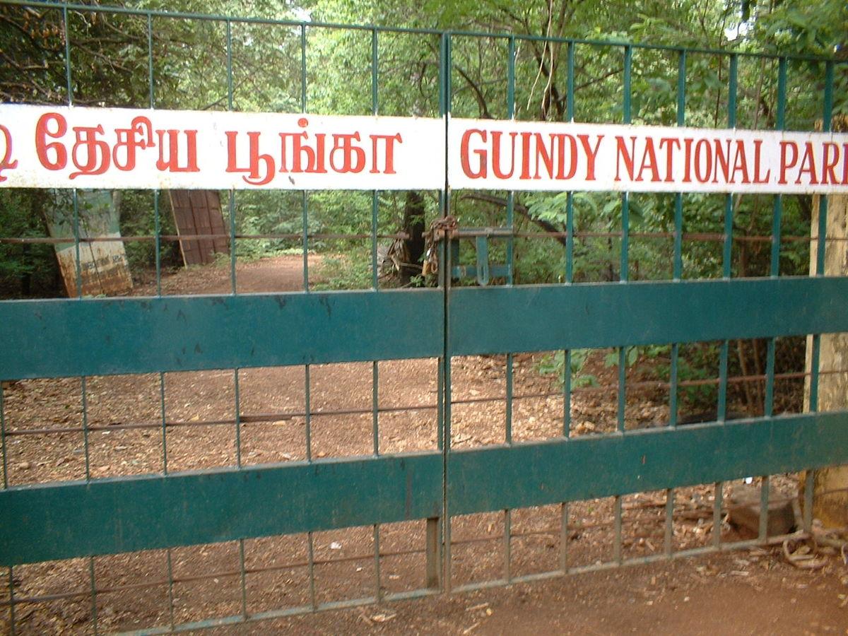 Top National Park In Tamil Nadu-Guindy National Park