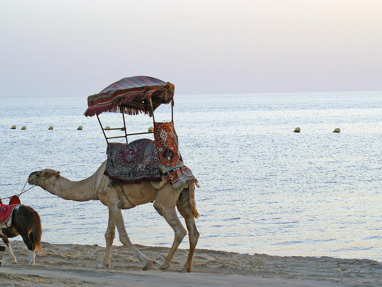 Top Beach To Visit In Karnataka-Half Moon Beach