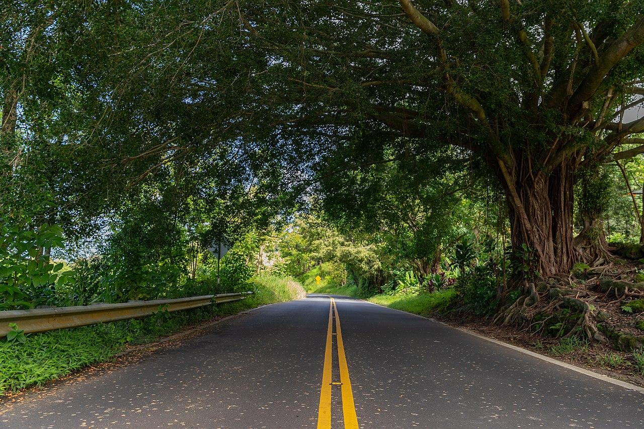 Top Tourist Place In Hawaii-Hana Road