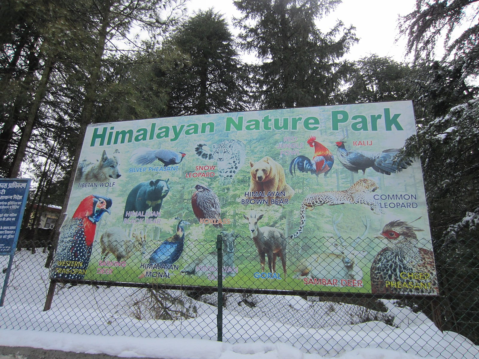 Top Place to Visit in Chail-Himalayan Nature Park
