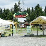 Homer Farmers Market, Homer, Alaska - Best Summer Markets in Alaska