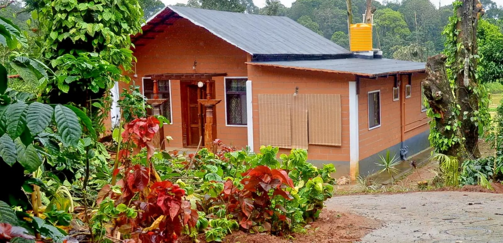 Homestay Amidst Coffee Plantation Coorg - Amazing Coffee Estate Stays In Coorg