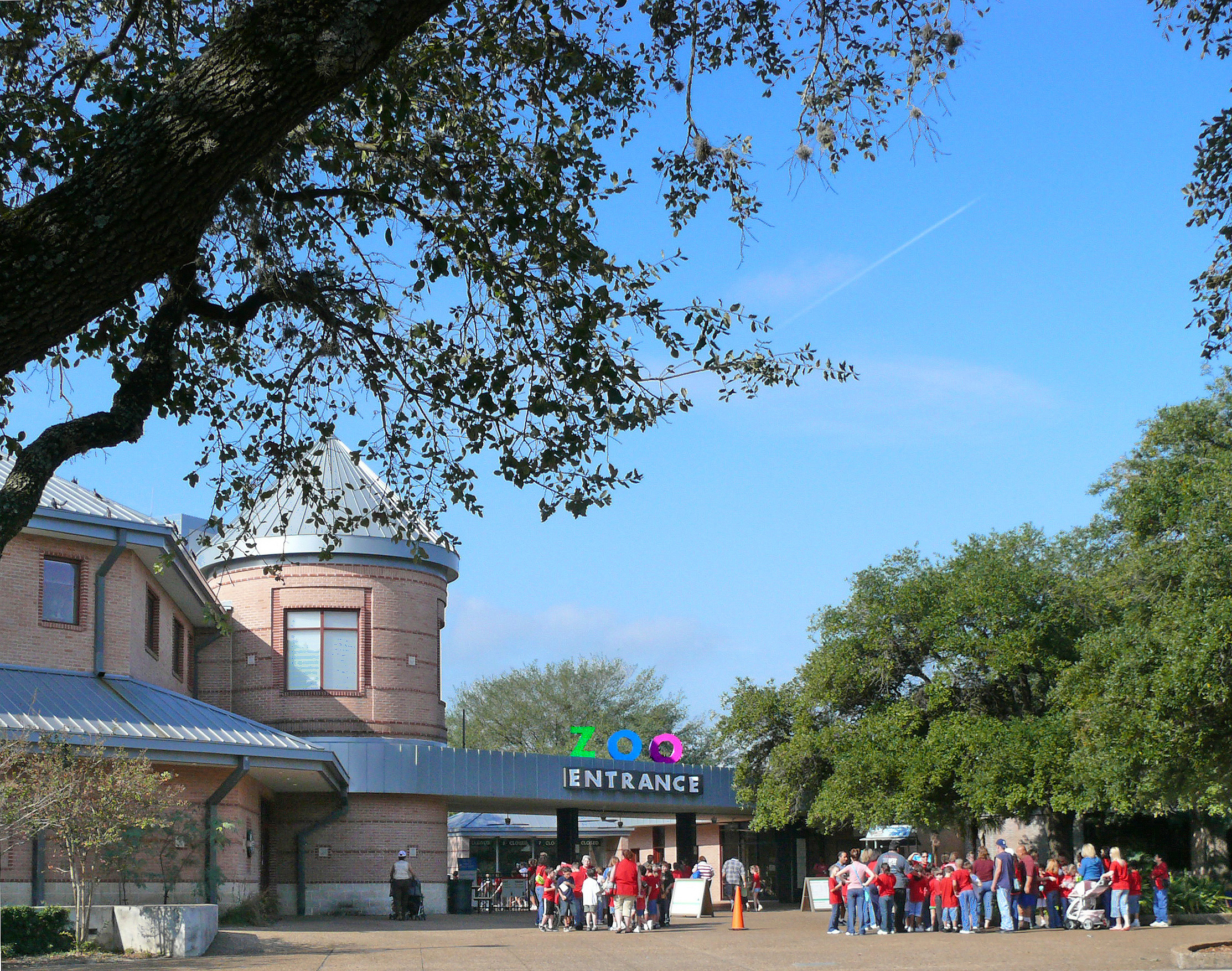 Houston Zoo That Every Tourists Must Visit in Houston