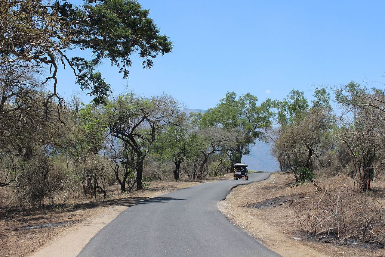 How is the Weather of Mudumalai Tiger Reserve?