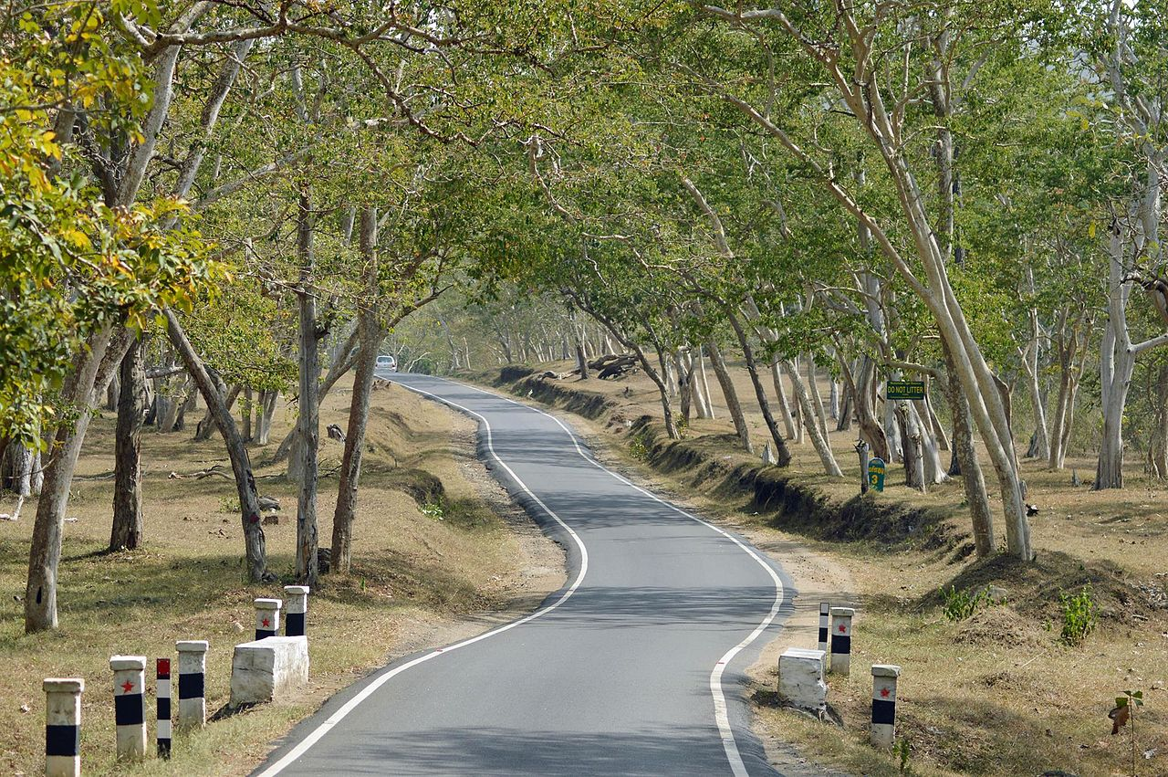 How to Reach Mudumalai Tiger Reserve?