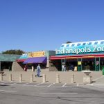 Amazing Place To Visit In Indiana-Indianapolis Zoo