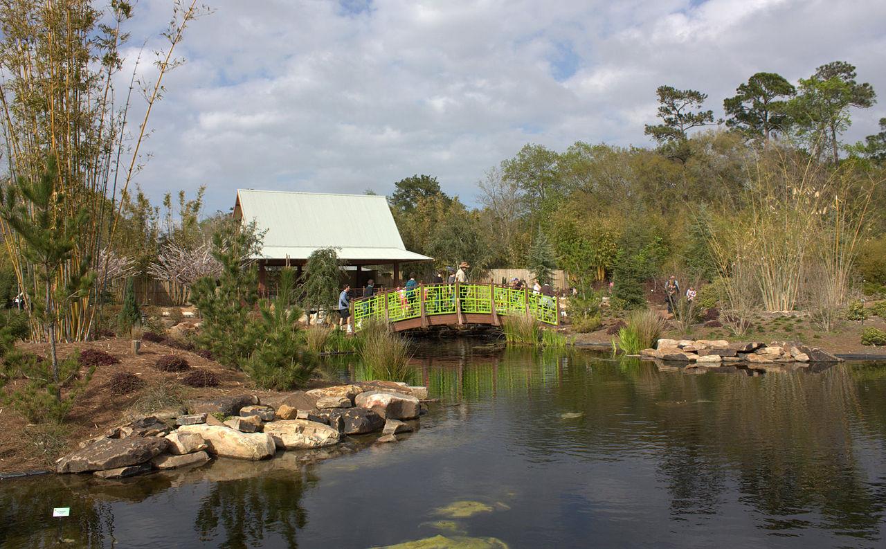 Amazing Destinations in Jacksonville-Jacksonville Zoo & Gardens