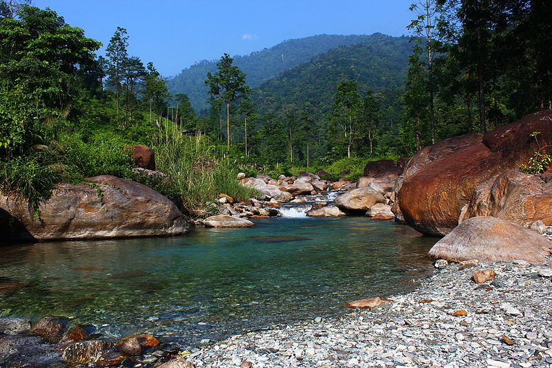 Jaldhaka - Place In West Bengal Which Are Worth A Visit For Every Tourist