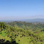 Jampui Hills - Tripura's Most Popular Tourist Destination