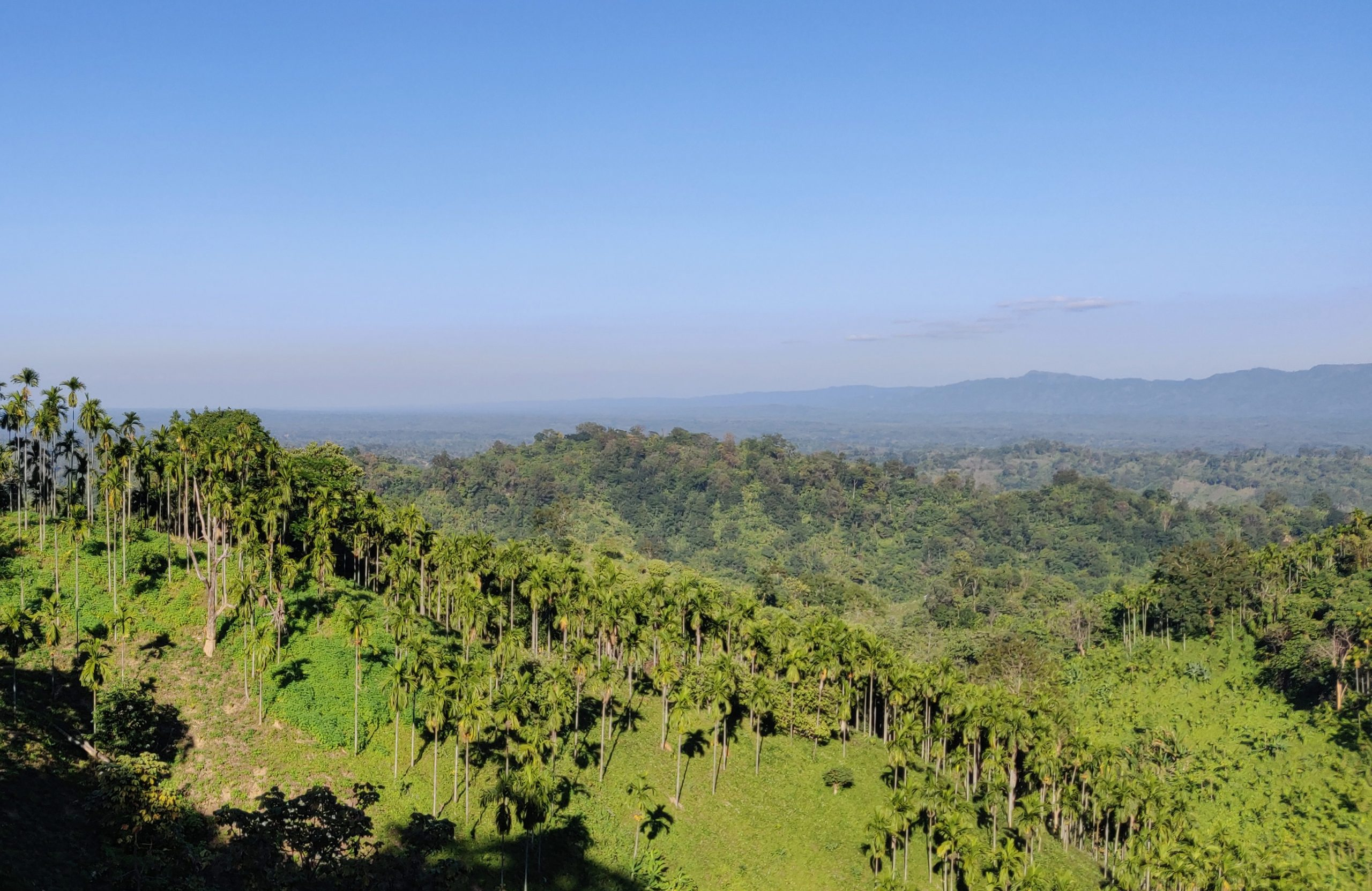 Beautiful Place to Visit In Tripura-Jampui Hills