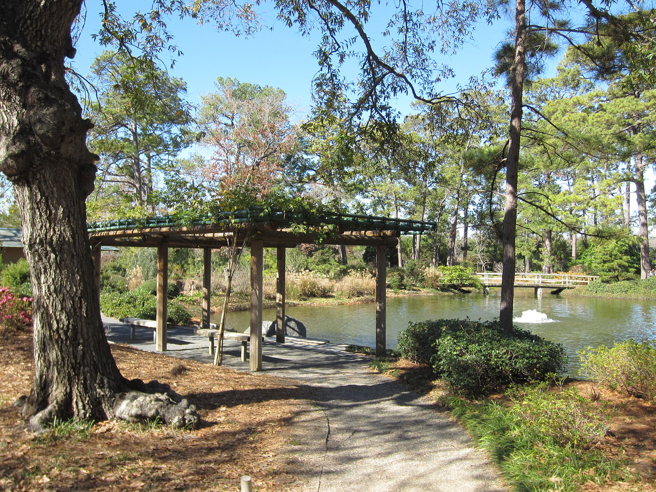 Top-Rated Place in Houston To Get Close To Nature-Japanese Garden
