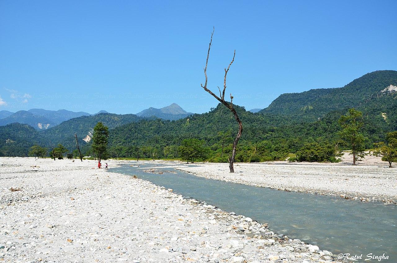 Best Visit Place Near Buxa Tiger Reserve-Jayanti River, Jayanti