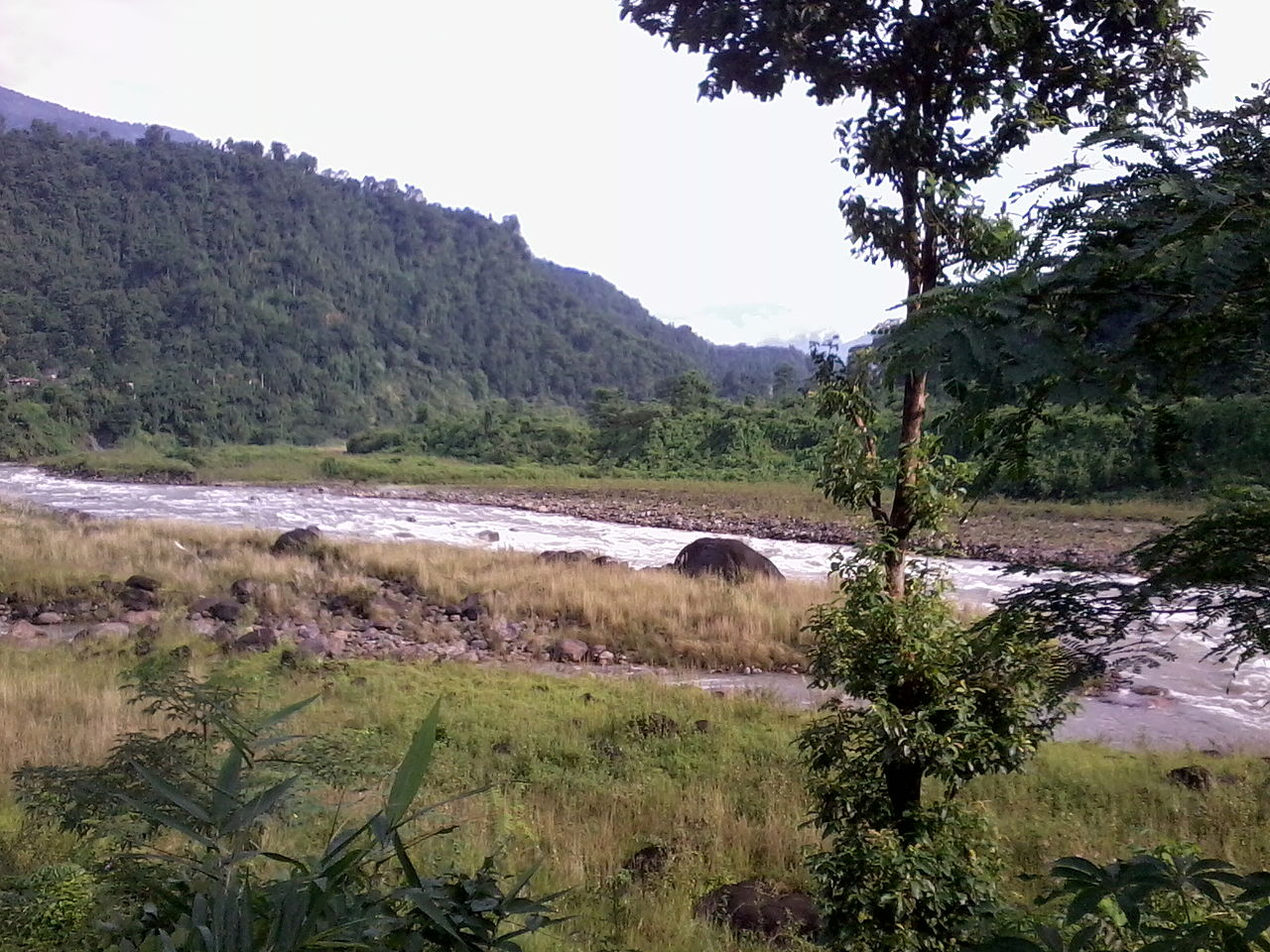 Amazing Place in Chalsa That are Genuinely Mystical-Jaldhaka River