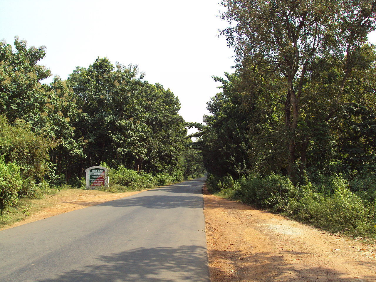 Attraction Place to Visit in Bankura-Joypur Jungle