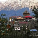 Visit Kalpa: The Gem Near Kinnaur Kailash in Himachal Pradesh