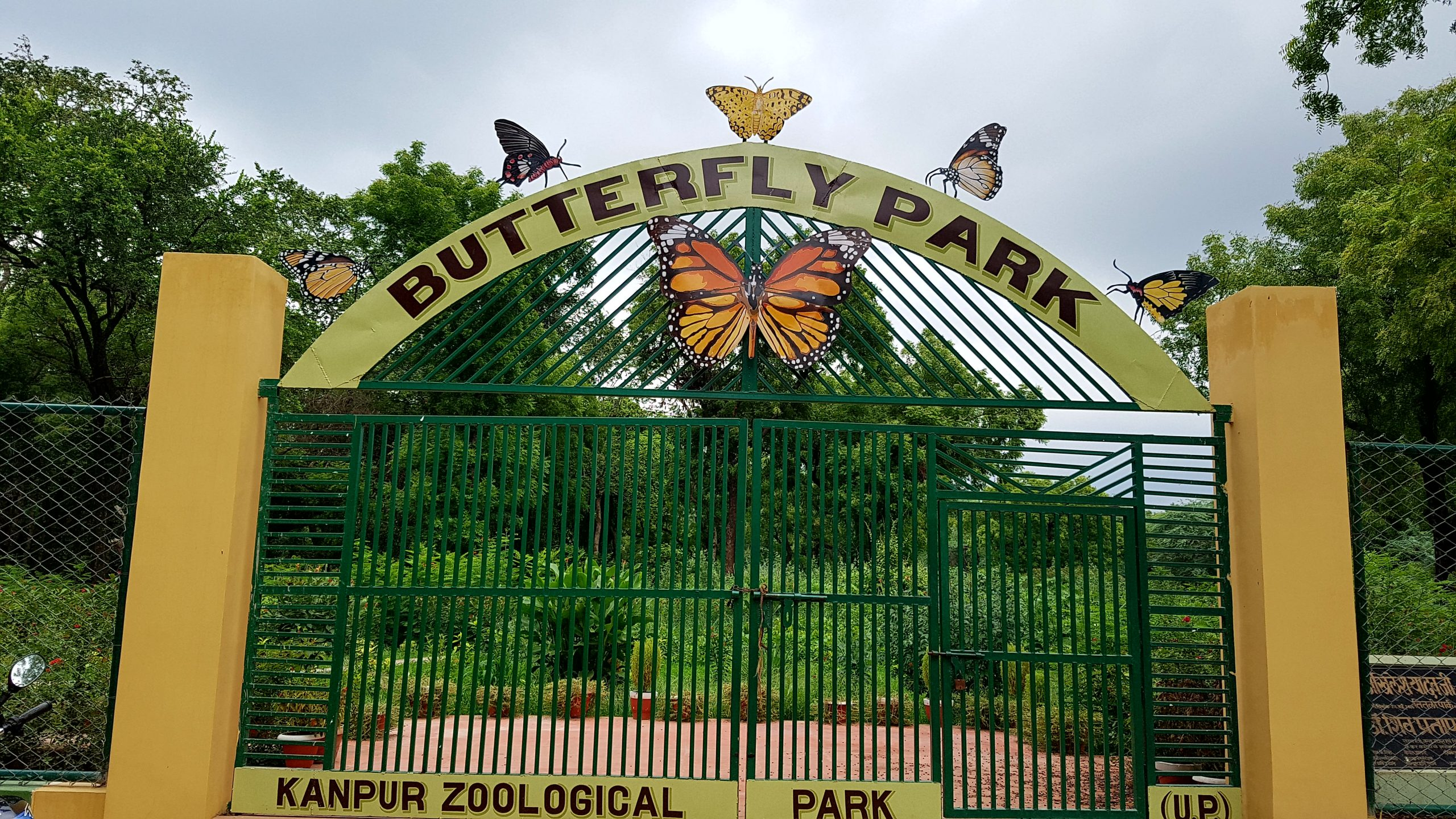 Amazing Place to See in Kanpur-Kanpur Zoo