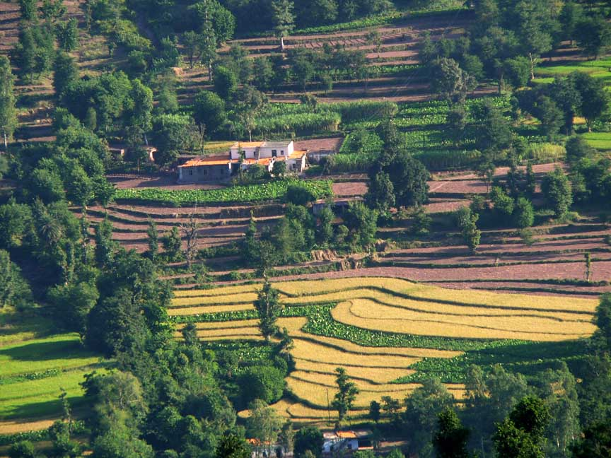 Sight-seeing Places For A Two Day Trips From Delhi-Kasauli