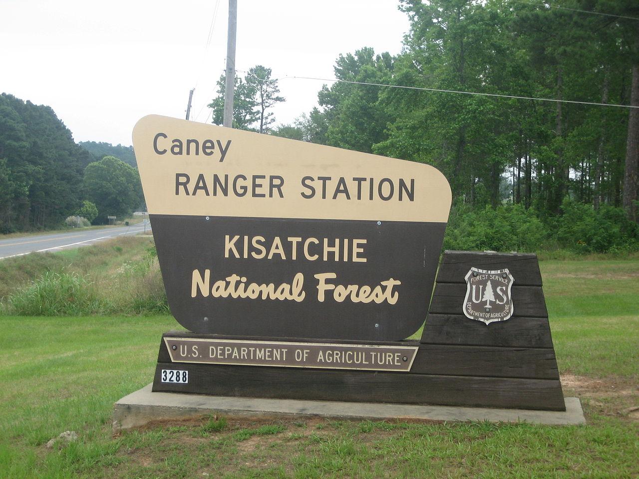Kisatchie National Forest - Weekend Getaway in Louisiana