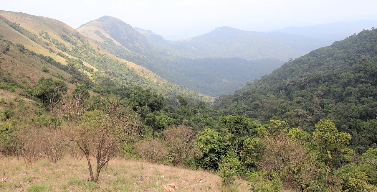 Place to Visit Nearby Nagara Fort-Kodachadri Hills
