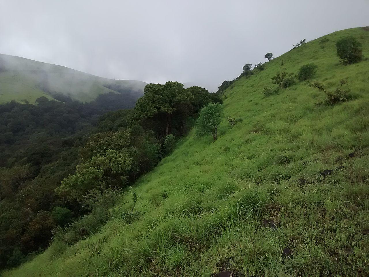 Amazing Place to Visit Nearby Maravanthe Beach-Kodachadri Hills
