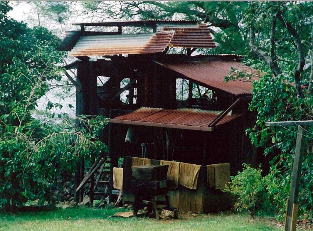 Beautiful Place to Visit In Hawaii-Kona Coffee Farm
