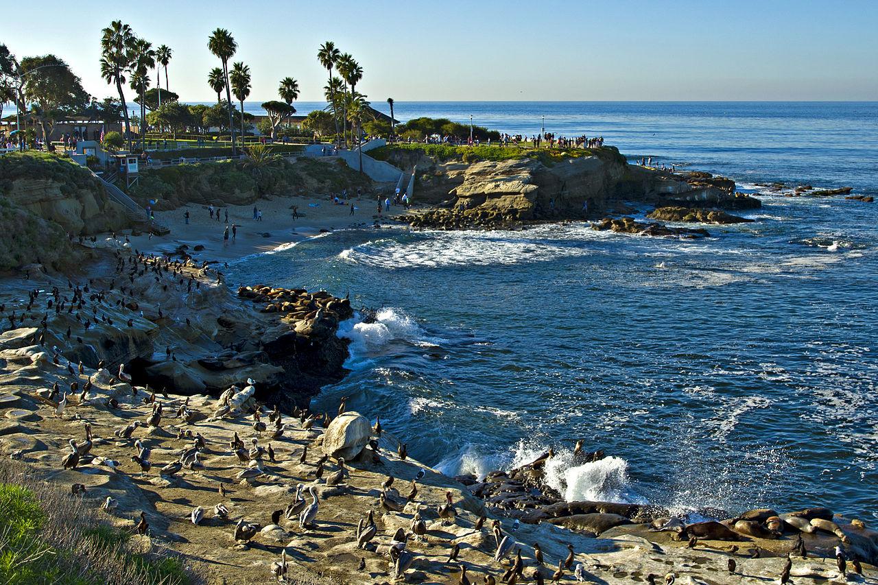 Attraction Tourist Place In Southern California-La Jolla Cove